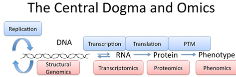 Central Dogma OMICS