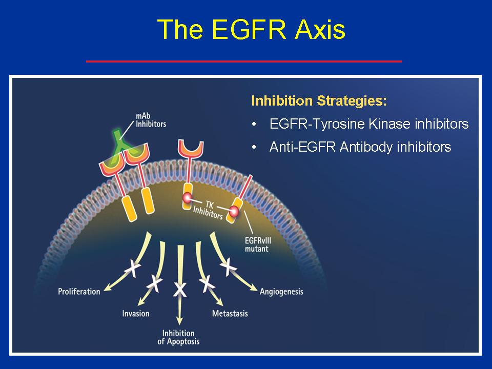 egfr-figure-moabs-vs-tkis