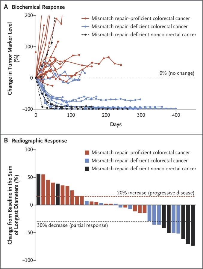 Clinical Responses to Pembrolizumab Treatment. The biochemical responses to pembrolizumab treatment are shown in Panel A. Serum levels of protein biomarkers were measured at the start of each treatment cycle, and the values represent percentage changes from baseline. Each line represents one patient; patients were included if their baseline tumor marker values were higher than the upper limit of normal. CA-125 was used as the biomarker for one patient with endometrial cancer, CA19-9 was used for one patient with cholangiocarcinoma and one patient with ampullary cancer, and carcinoembryonic antigen (CEA) was used for all other patients. Radiographic responses to treatment with pembrolizumab, evaluated on the basis of Response Evaluation Criteria in Solid Tumors (RECIST), are shown in Panel B. Tumor responses were measured at regular intervals, and the values shown are the largest percentage change in the sum of longest diameters from the baseline measurements of each measurable tumor. Each bar represents one patient. Le DT et al. N Engl J Med 2015;372:2509-2520