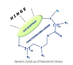 nanokinib design