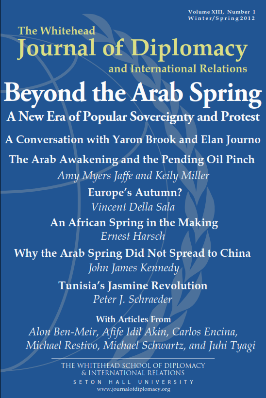 13.2 Beyond the Arab Spring Cover