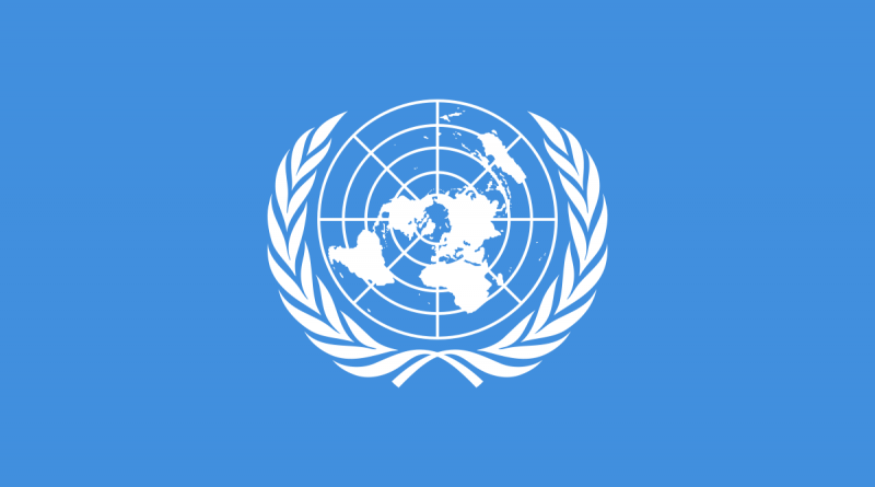Equitable Geographic Representation in the United Nations: An Assessment of the State of the International Character of the United Nations' Workforce