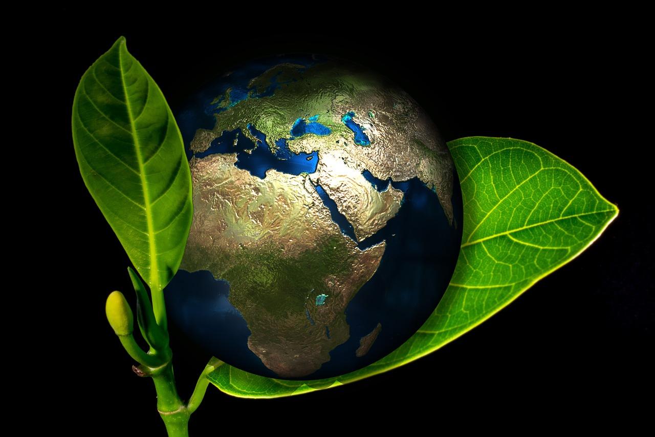 earth-405096_1280 (1)