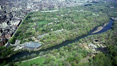 Bronx Zoo History Of New York City