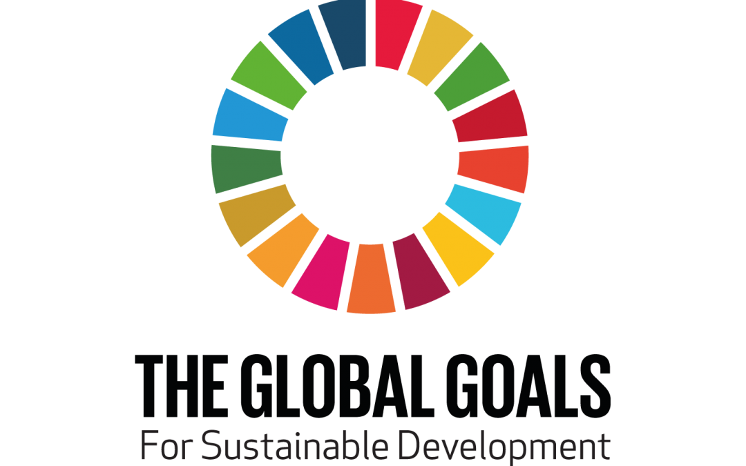 UN Sustainable Development Challenge: Cristian Ramos Miranda Reflects