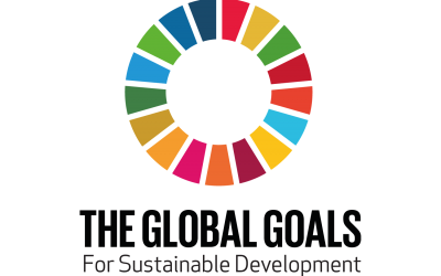 UN Sustainable Development Challenge: Cristian Ramos Miranda Reflects