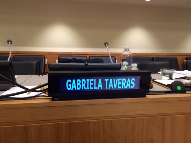 Presenting at the UN: A Diplomacy Student's Perspective