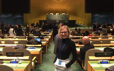 Graduate and Undergraduate Students: Call for New Diplomacy UN Youth Representatives