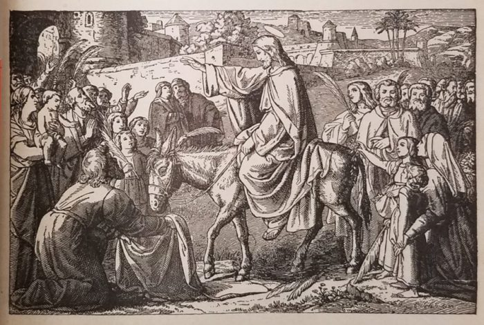 """Image: """"Christ's Triumphal Entry to Jerusalem,"""" from: Bible History, Containing the Most Remarkable Events of the Old and New Testaments,"""" By Right Reverend Richard Gilmour, D.D., Bishop of Cleveland, Ohio. New York: Benzinger Brothers, 1894"""