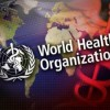 The Global Role of the World Health Organization Jennifer Prah Ruger and Derek Yach The 21st century global health landscape requires effective global action in the face of globalization of […]