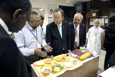 Food Safety and Global Health: An International Law Perspective
