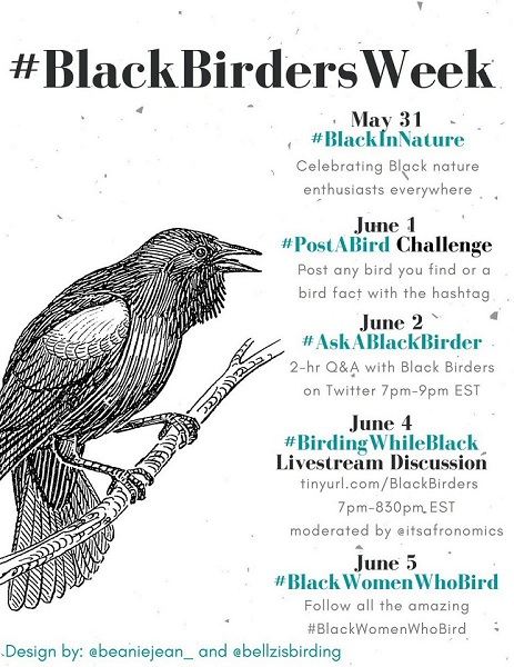 Social Media Flyer for #BlackBirdersWeek which occurred May 31 to June 5