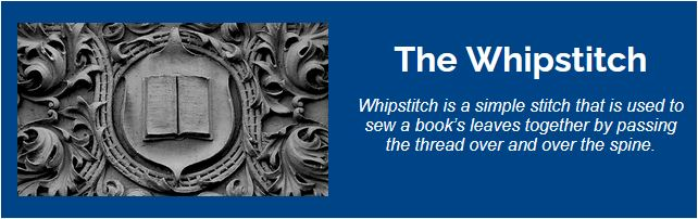 Fall 2021 Edition of 'The Whipstitch' Newsletter Now Available