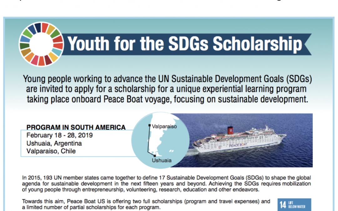 Youth for SDGs Scholarship – Applications open!